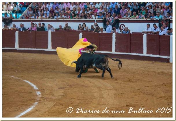 Toros Feria 2015-9853