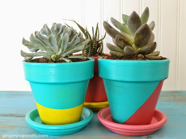 color blocked pots
