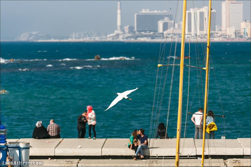 Электростанция Рединг в Тель Авиве | Reading power station in Tel Aviv | LookAtIsrael.com - Фото путешествия по Израилю