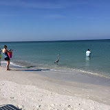 Florida Spring Break - April 2015 - 022