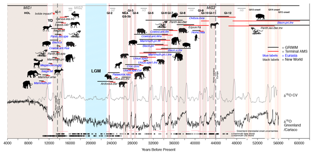 a history of the ice age extinctions of the megafauna The extinction of megafauna around the world was probably due to environmental and ecological factors it was almost completed by the end of the last ice age.