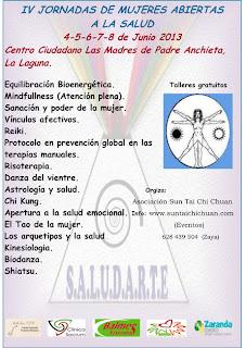 Poster Organización Jornadas Abiertas a la Salud 2013