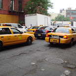 yellow cabs in New York City, New York, United States