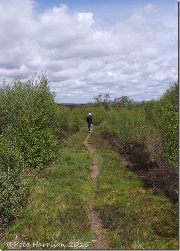 2-Glenwhan-Moor