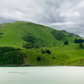 New Zealand Countryside by Barb Hauxwell - Landscapes Mountains & Hills ( field, water, clouds, countryside, hills, sound, backgrounds, dramatic, tourism, sheep, travel, new zealand )
