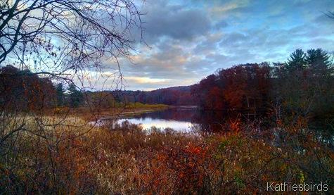 33. 1-5-15 Fitchville Pond