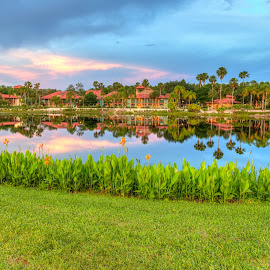 Coronado Springs Casita's by R Jay Prusik - City,  Street & Park  Vistas ( reflection, sky, disney world, casita, blue hour, lake, landscape, coronado springs, , relax, tranquil, relaxing, tranquility )