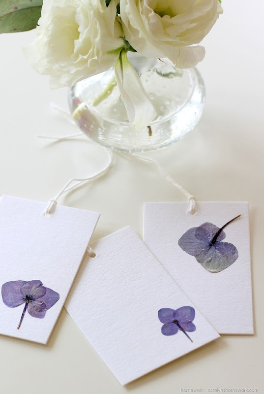Pressed Hydrangeas via homework (10)