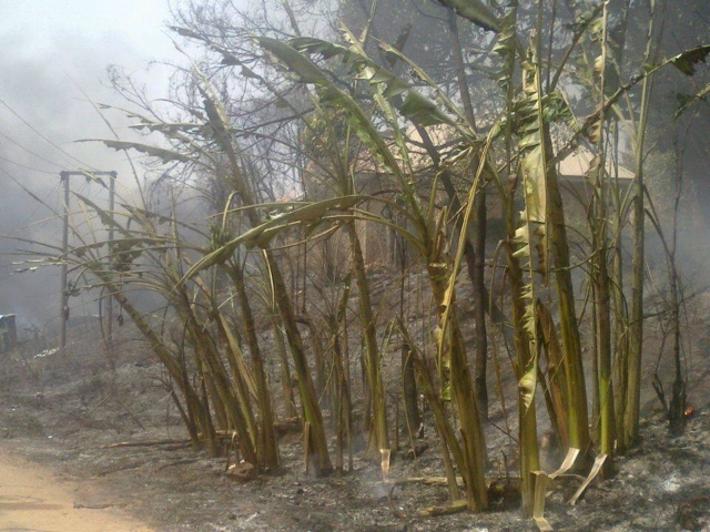 PHOTOS: Over 100 Die In Nnewi Gas Plant Explosion 10