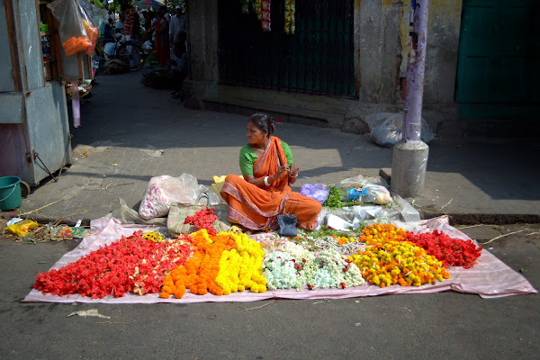 цветы цветочный рынок индия
