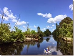 Dismal Swamp Deep Creek Dock