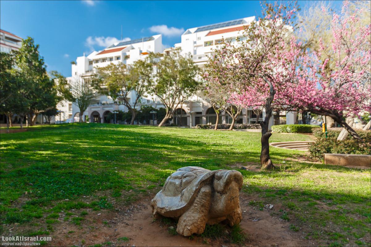 Серия рассказов о городах Израиля «Точки над i» - Кфар Сава (Кфар Саба)   LookAtIsrael.com - Фото путешествия по Израилю