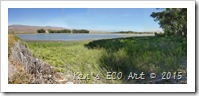 EP-PNWR Upper Lake