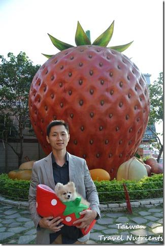 大湖草莓 (10)