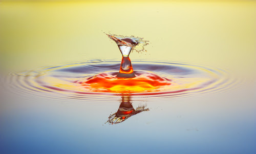 Impact by David Mitlewski - Nature Up Close Water ( water, highspeedfotography, macro, highspeed, tropfen, waterdrop, drop, wasser, wet, glimpsecatcher, close up, collision )