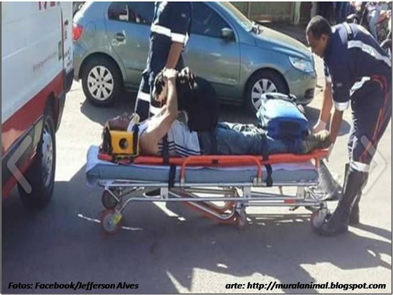 cao-ambulancia (7)