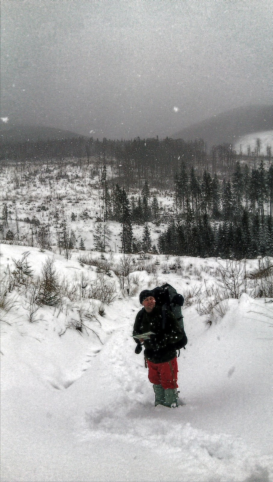Підйом вирубкою на гору Яйко Ілемське