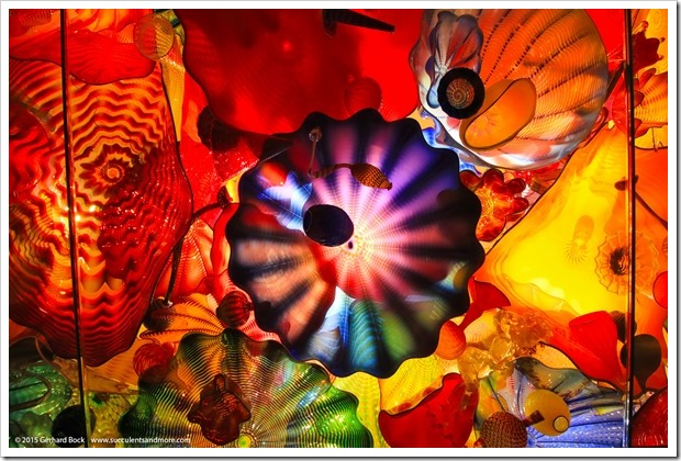 150626_Seattle_ChihulyGardenGlass_0002