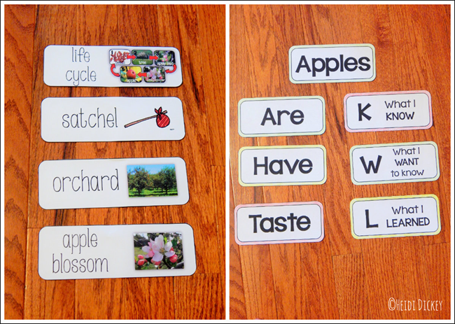 Apple Unit Vocabulary