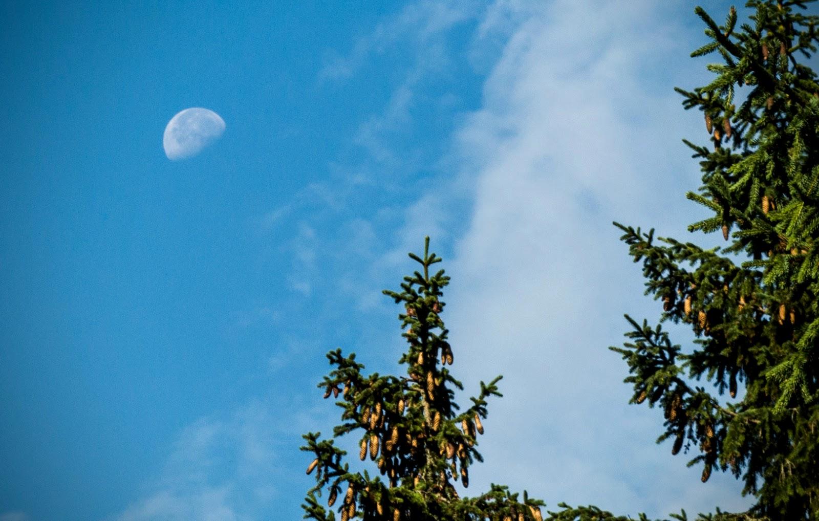 Місяць, Мармароси