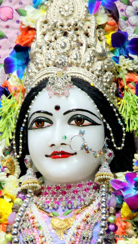 ISKCON Juhu Sringar Deity Darshan 11 Feb 16 (42)