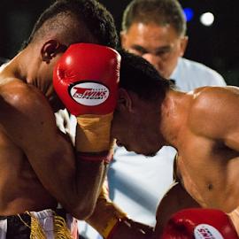 Headbutt by Xióng Xióng - Sports & Fitness Boxing ( brave, ring, punch, headbutt, box )