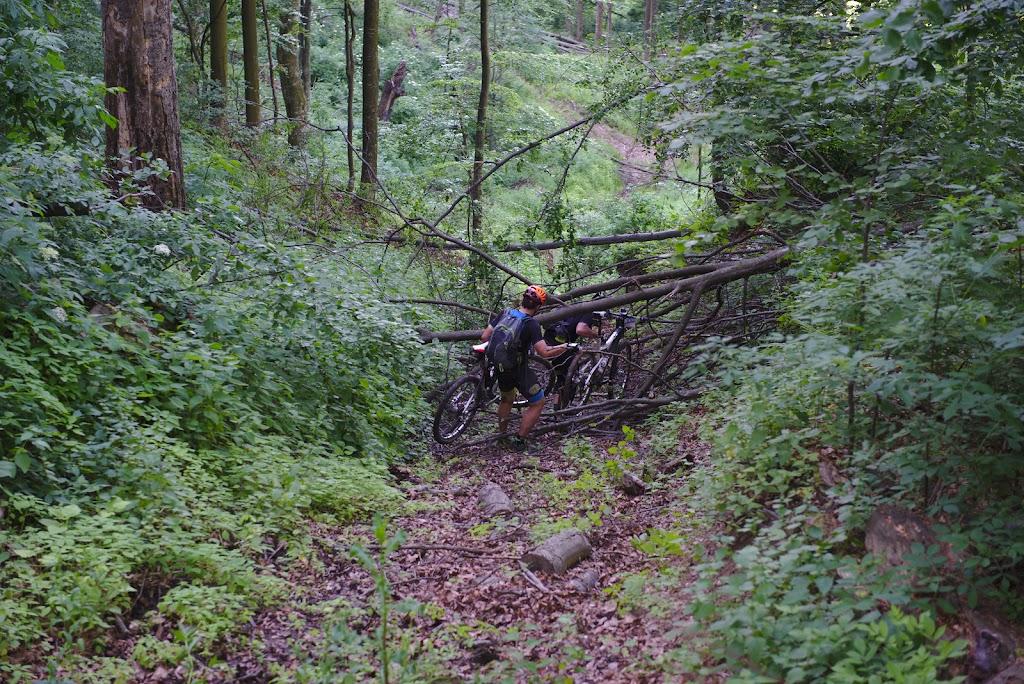 La inceputul unei ore de impins bicicletele la vale, peste trunchiuri de copaci cazuti pe un drum capcana ce aparea totusi pe GPS.