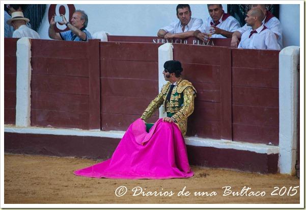 Toros Feria 2015-9840