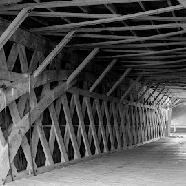 A Journey 2 by Lisa Dudley - Buildings & Architecture Bridges & Suspended Structures ( black and white, bridge )