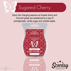 scentsy 2