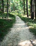 Forest trail near Meadowside Nature Center in Rock Creek Park, Rockville, Maryland.