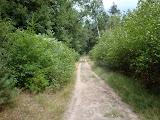Op weg naar de laatste rust nabij Ugchelen.