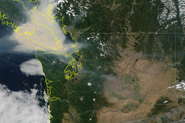 Satellite view of smoke from British Columbia wildfires covering Vancouver Island, 5 July 2015. Photo: wasmoke.blogspot.com