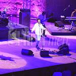 shinymen-cheb-khaled-festival-de-carthage-2013 (25).JPG