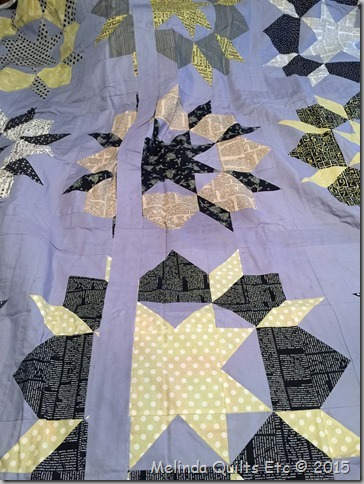 0115 UFO #3 - Swoon Quilt