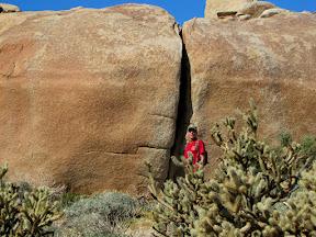 The Piedras Grande of Anza Borrego s area has amazing rocks