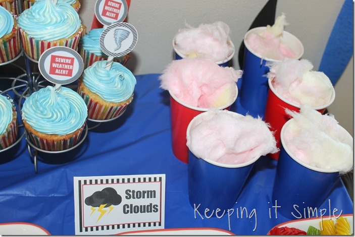 boy-birthday-party-idea-natural-disaster-party (7)