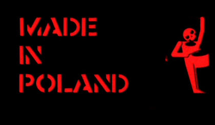 Made in Poland (2010) PL.TVRip.XviD / PL