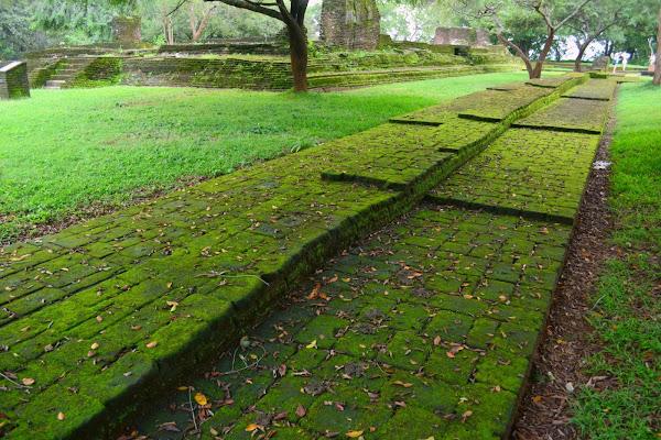 Покрытые мхом руины в саду, Полоннарува, Шри Ланка