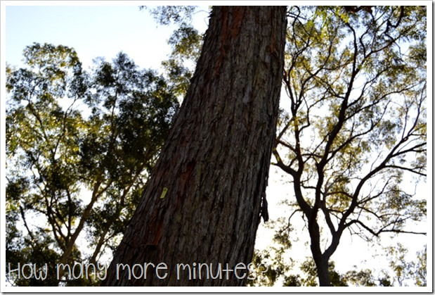 Life in a Caravan: Six Months in! ~ How Many More Minutes?
