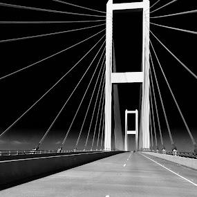 Bridge by Clement Stevens - Transportation Roads ( black and white, louisiana, bridge )