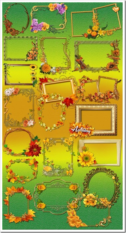 gorgeous flower frames