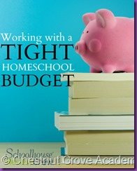 Working-with-a-Tight-Homeschool-Budget1