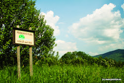 Čedičová žílu Boč je součástí Přírodního parku Stráž nad Ohří, který se rozprostírá na území o rozloze 37 km2. Z hlediska biologických poměrů se jedná o oblast, která je ovlivněna termofytikem dolního Poohří. Na výslunných polohách čedičového podloží nalezneme bohatou teplomilnou vegetaci.