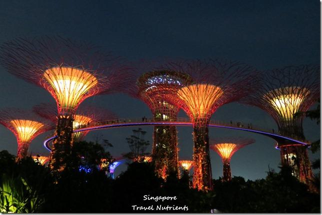 新加坡超級樹燈光秀 (34)