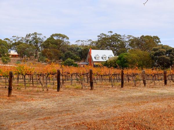 Wishful Thinking - South Australia