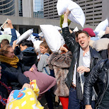 pillow fight day toronto 2015 in Toronto, Ontario, Canada