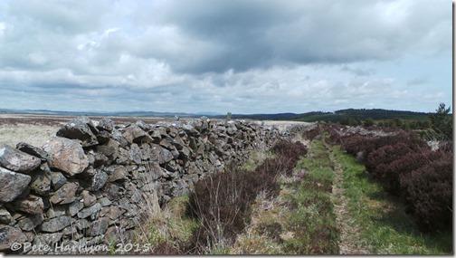 8-Glenwhan-Moor