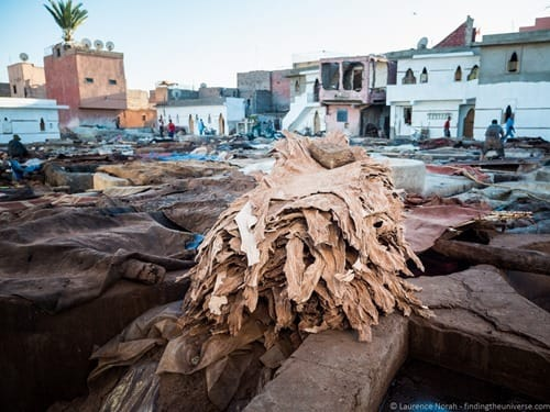 Skins in Marrakesh tannery