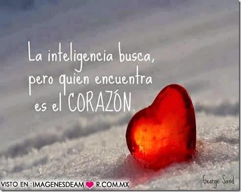 imagenes y frases de amor 14febrero (50)